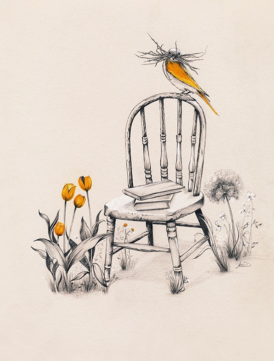 Ilustradora Noelia Diaz CHAIR