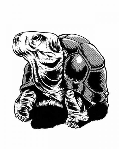 Ilustradora Noemí González Ilustración 16