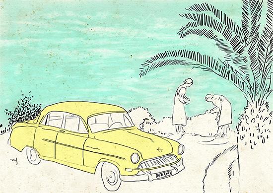 Ilustradora Marta Font, Ilustración California Dreaming